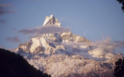 Machapuchare, Annapurna Base Camp Trek (T101)
