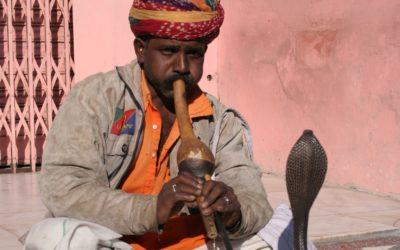 Schlangenbeschwörer in Jaipur, Rajasthan