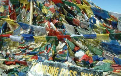 Annapurna Runde (T109, T103), am Thorong La